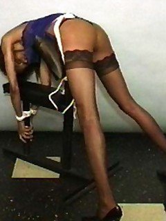 Black Beauty Bondage1